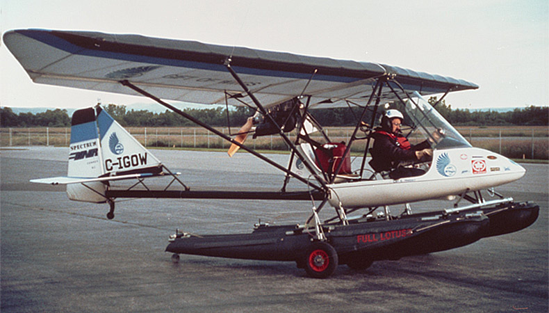 Avion Beaver RX550 de Spectrum