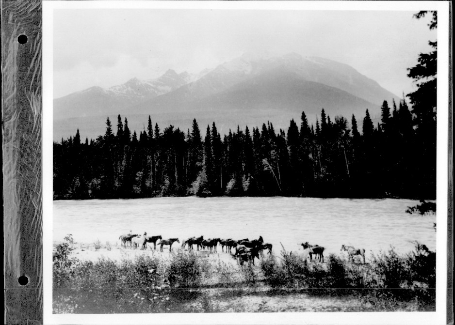 Shore scene with horses at Tete Jaune Cache, B.C. about 1913
