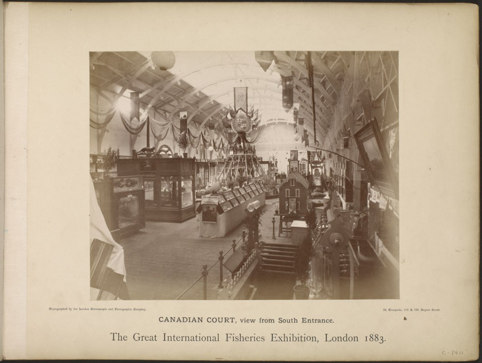 The Canadian Court at the London Fisheries Exhibition, 1883. Library and Archives Canada Mikan # 4111981.