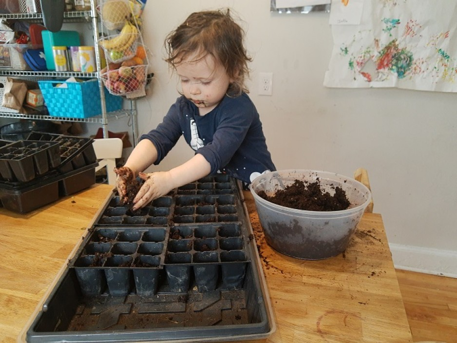 Child puts soil in tray