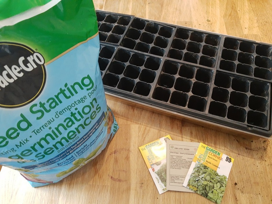 potting soil, seeds and a tray