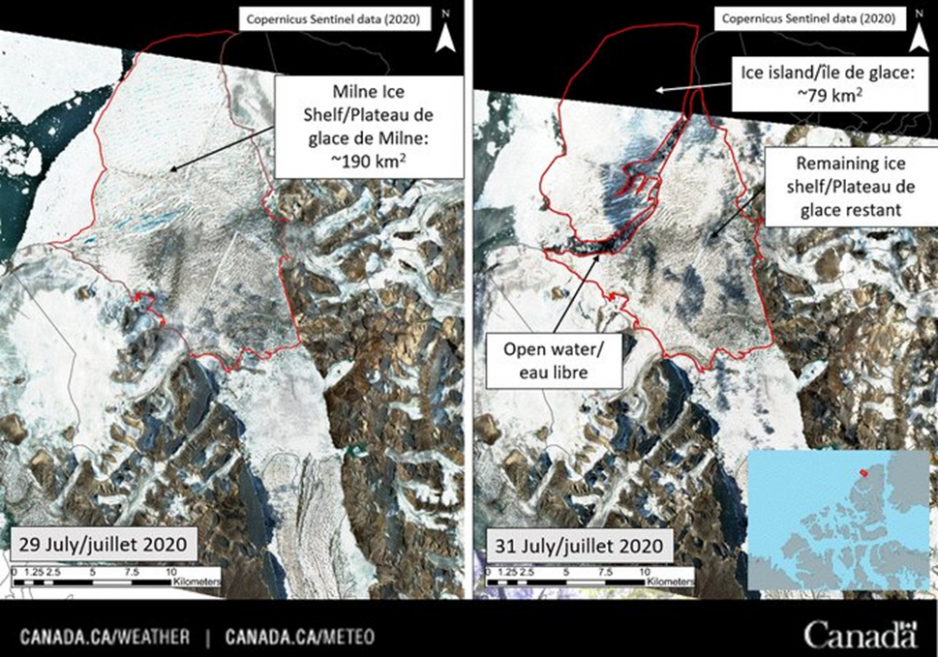 Before and after satellite photos of the Milne Ice Shelf. The before image shows the Milne Ice Shelf occupying an inlet. The after image shows the same ice shelf, but roughly half of it has broken away into two large chunks which are beginning to float away into the ocean.
