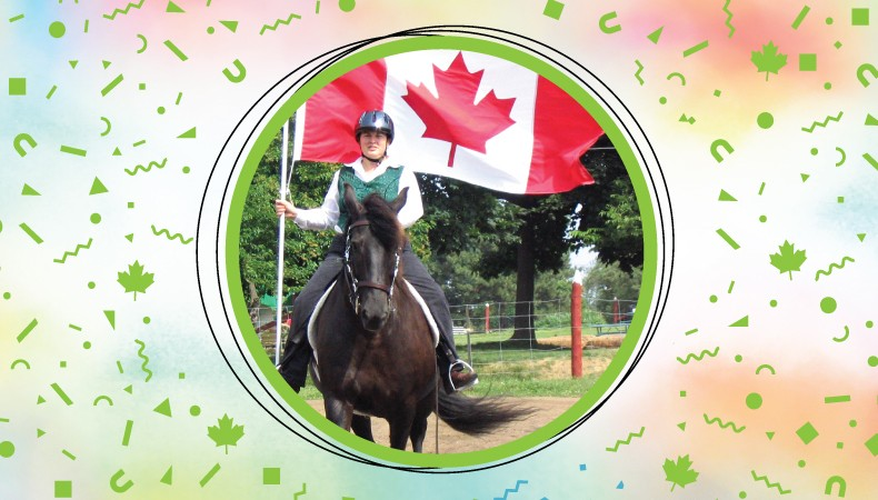 Rider on a Canadian horse