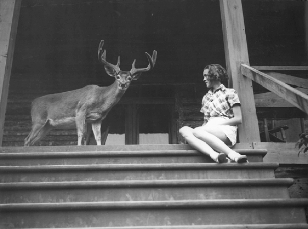 Girl near deer