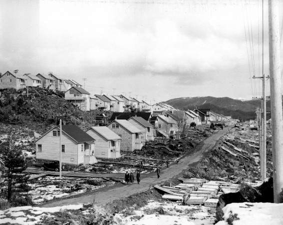 "Houses in ""Rushmore Heights"", the location of one of the Wartime Housing Ltd., developments of homes for married workers from Prince Rupert Drydock & Shipyard."