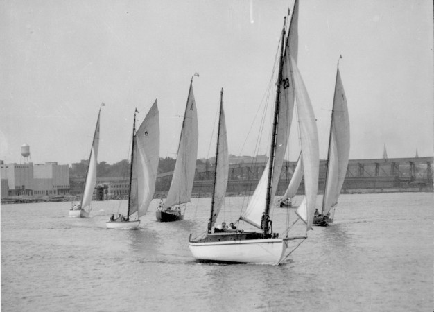 A group of sailboats race on the waters of Halifax Harbour