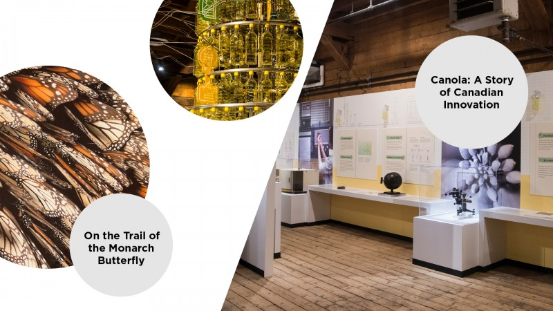 annual report highlights - travelling exhibitions
