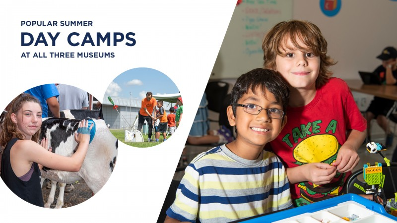 annual report highlights - summer day camps