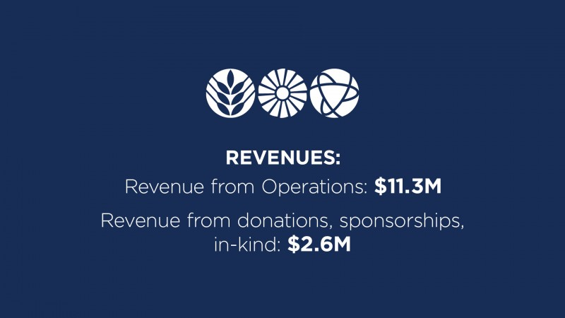 annual report highlights - revenues