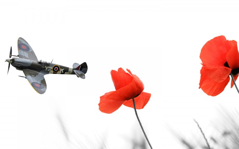 Supermarine Spitfire flying in the distance with two red poppies in focus