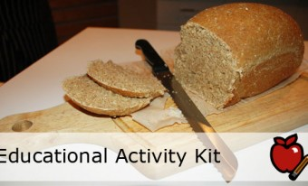 Properties of and Changes in Matter: Bread Educational Activity Kit