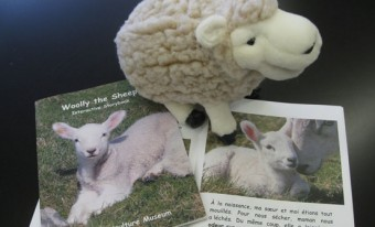 The Wonderful World of Woolly the Sheep Travelling Edukit