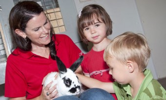 AgVenture: Buddy Rabbit School Program