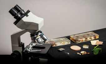 microscope and slides