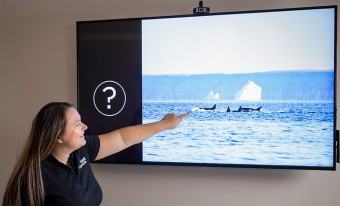 A museum employee pointing out at images on a screen