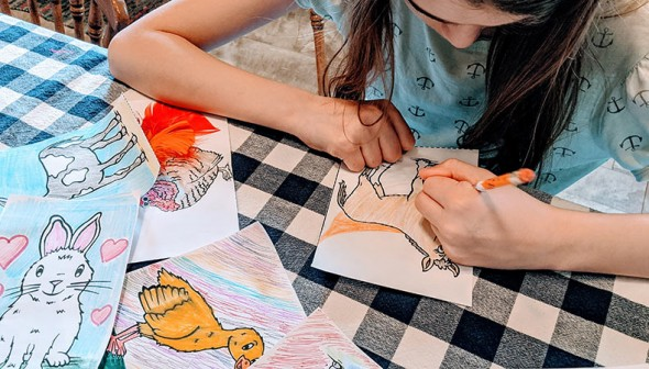 young girl colouring farm animal illustrations