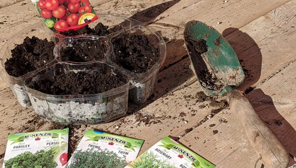 some soil in a plastic container, a shovel and a few seed packets