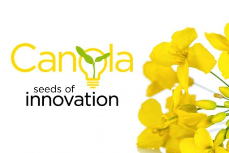 Canola! Seeds of Innovation
