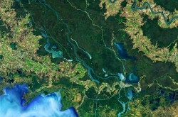 A false colour image of the Atchafalaya Delta taken by NASA's Landsat 8 satellite.