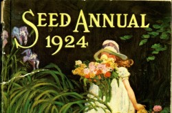 D.M. Ferry & Co. Seed Annual 1924, Catalogue from CSTM Library's Trade Literature Collection