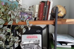 A tight shot of a bookshelf, crowded with a plant, photographs, a stereo speaker, and some books visible on these shelves.